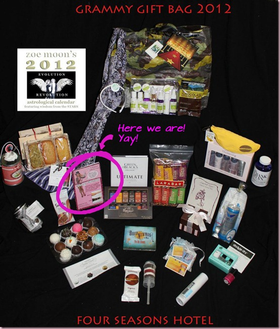 grammy gift basket sleevey wonders celebrity thumb Sleevey Wonders in 2012 Grammys Celebrity Gift Baskets!